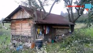 TAK TO JE PECKA! CHATRČ prorostlá stromy má vlastní kamerový systém!