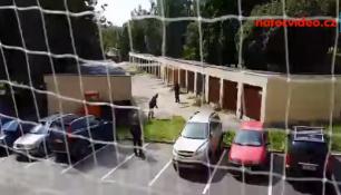 NEMOCNÁ LIŠKA se toulala po Jirkově..reportérka čekala na odchyt 20 minut!