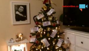VIDEO DNE: Stromečku otřes se! Tohle je prostě