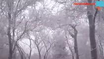 A je to tady! V Česku se přihlásila zima a připomněla se sněhovou nadílkou