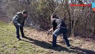 ZÁCHRANA SRNCE - TOP VIDEO TOHOTO TÝDNE!