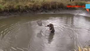 VIDEO DNE: Chtěli chytit 30 kilového sumce, místo toho mají zlatou rybku!